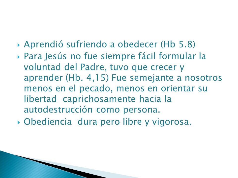 Aprendió sufriendo a obedecer (Hb 5.8)