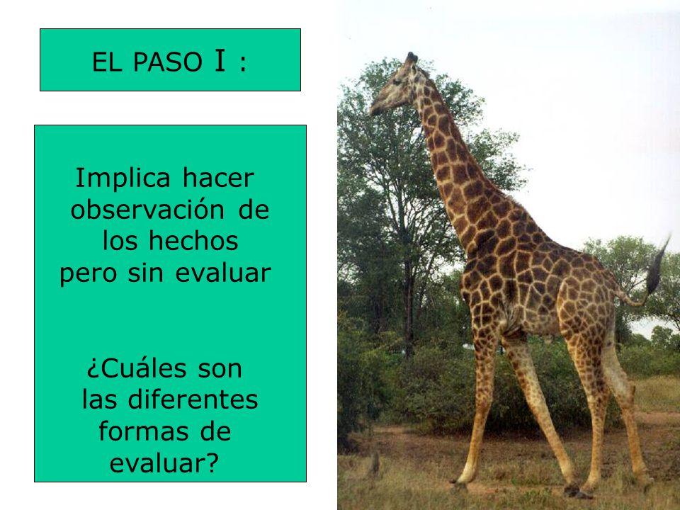 EL PASO I : Implica hacer. observación de. los hechos. pero sin evaluar. ¿Cuáles son. las diferentes.