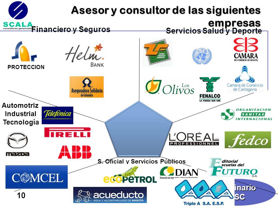 Asesor y consultor de las siguientes empresas
