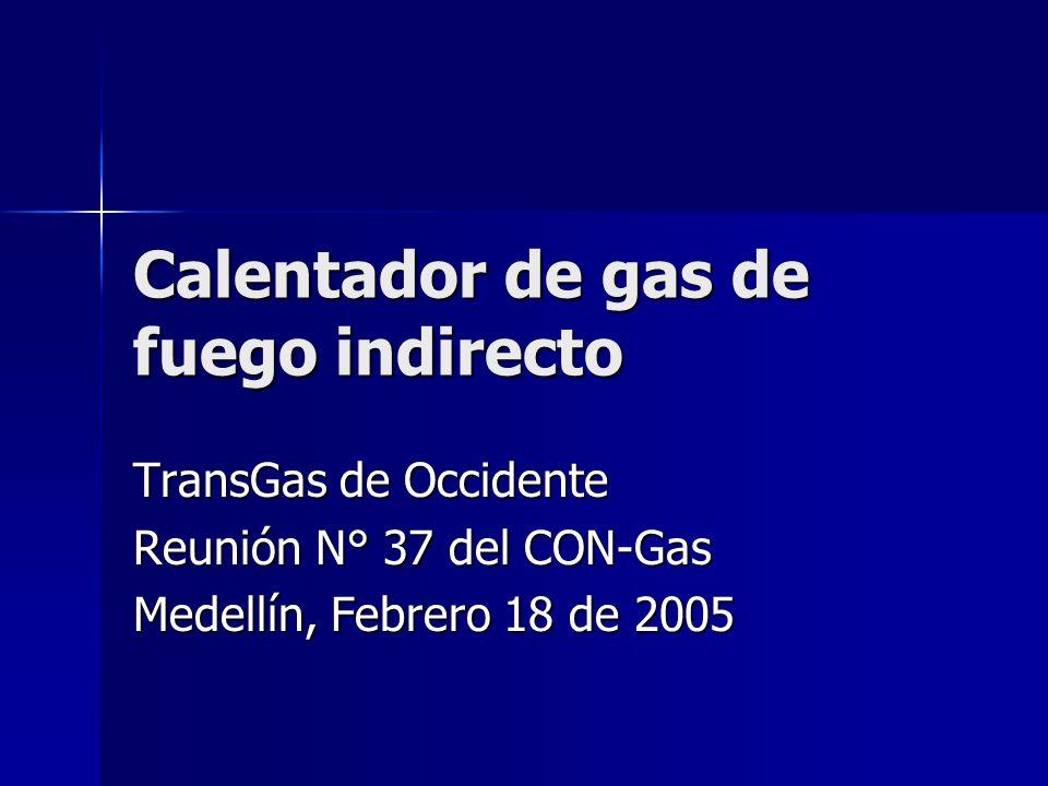 Calentador de gas de fuego indirecto