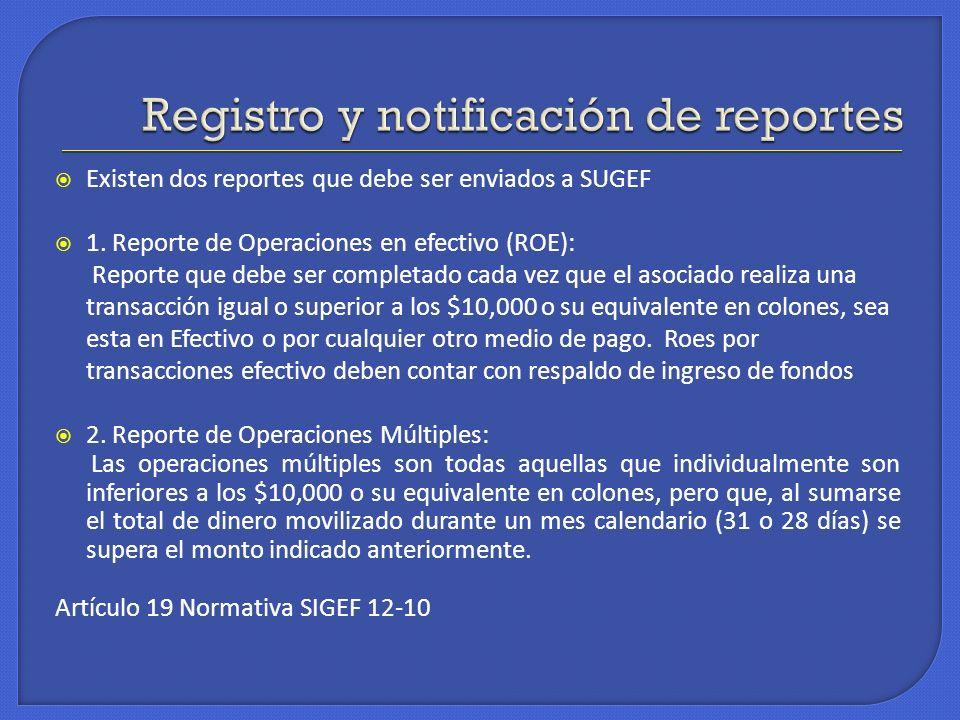 Registro y notificación de reportes