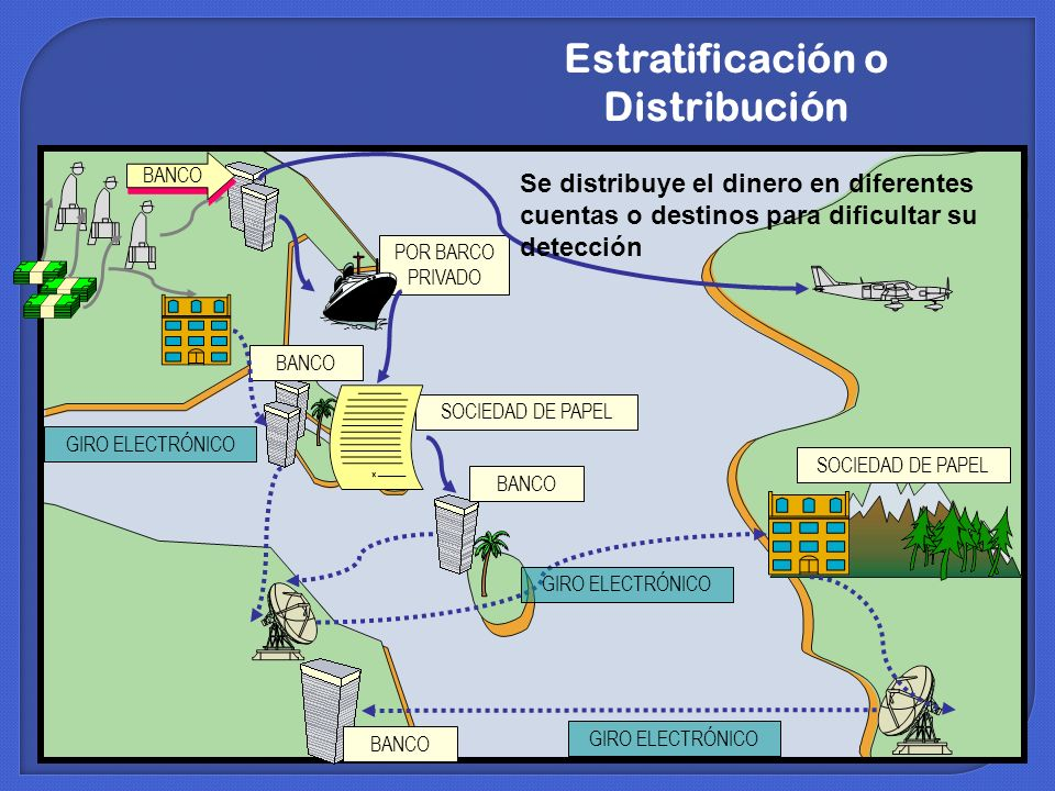 Estratificación o Distribución