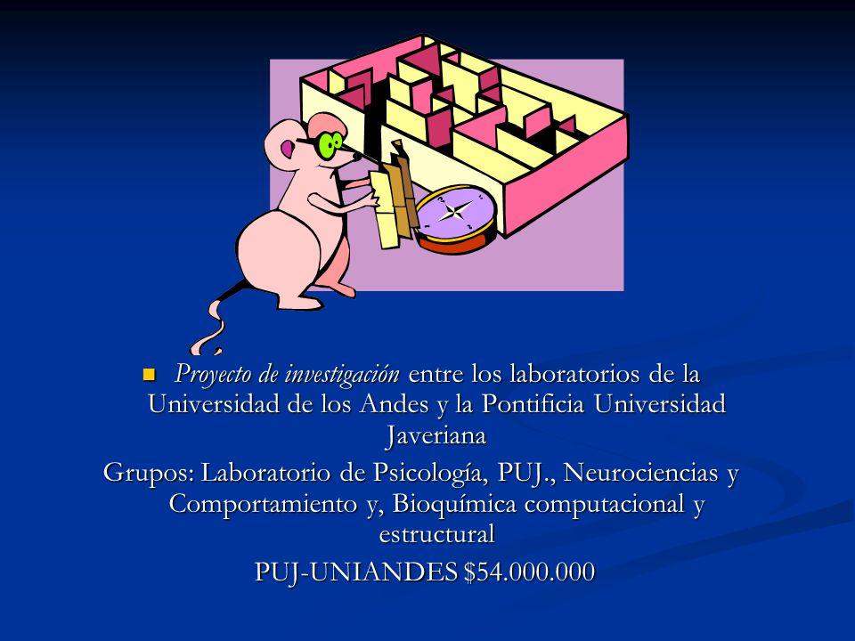 Proyecto de investigación entre los laboratorios de la Universidad de los Andes y la Pontificia Universidad Javeriana