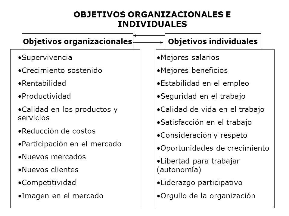 OBJETIVOS ORGANIZACIONALES E INDIVIDUALES