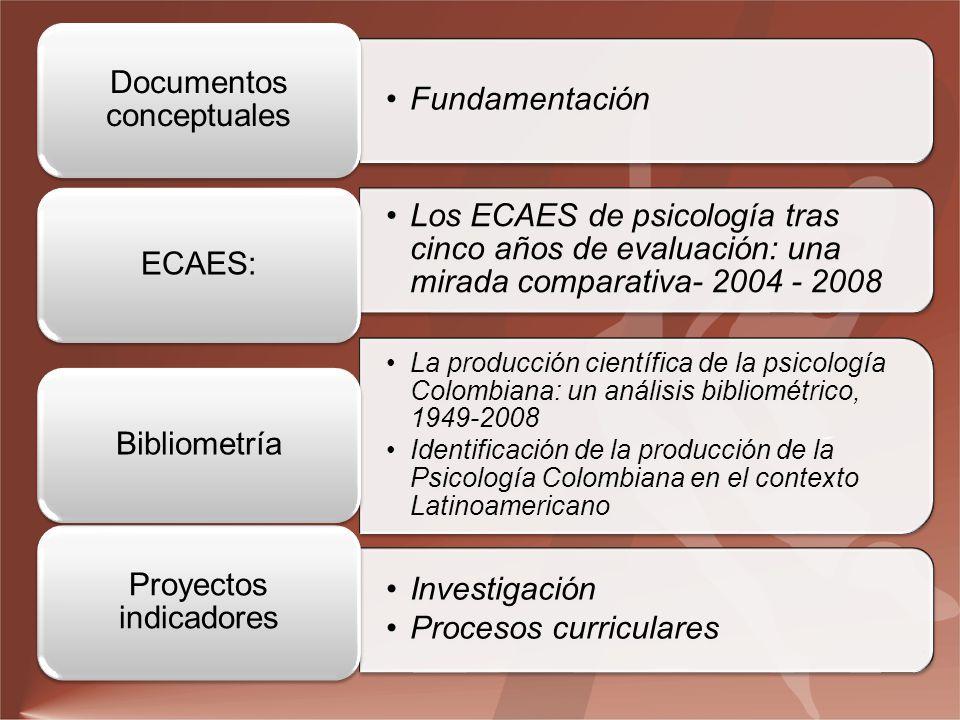 Documentos conceptuales Fundamentación Proyectos indicadores