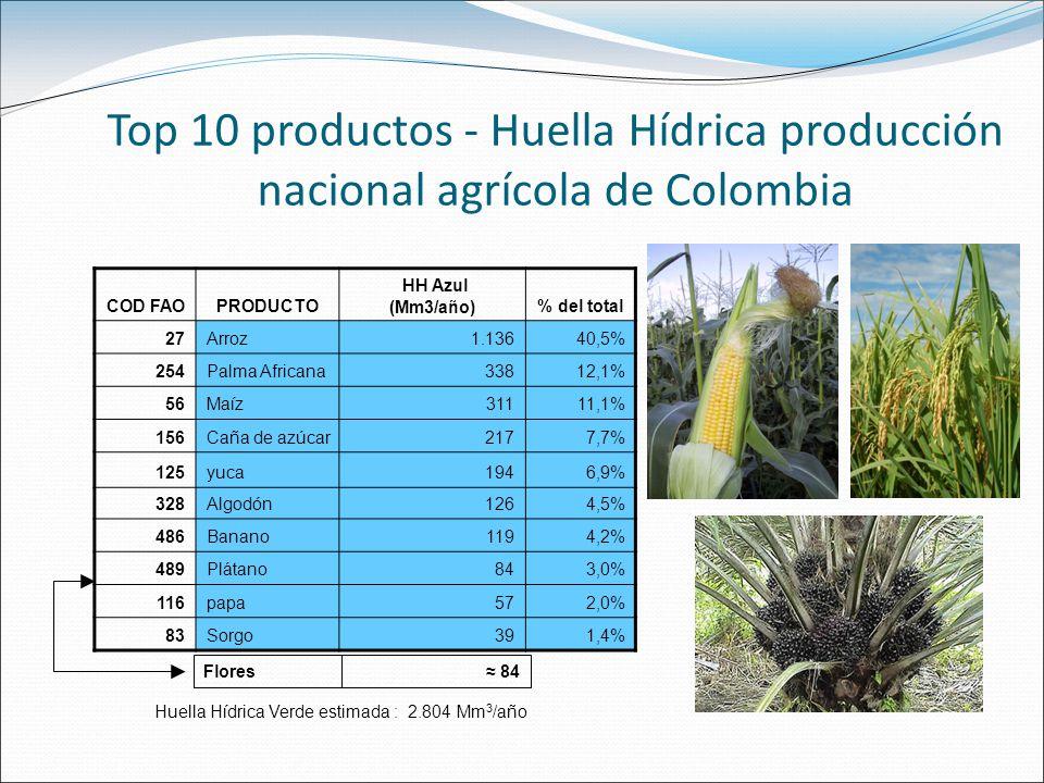 Top 10 productos - Huella Hídrica producción nacional agrícola de Colombia