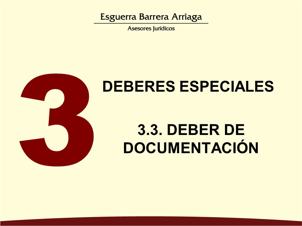 3.3. DEBER DE DOCUMENTACIÓN