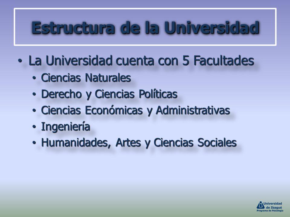 Estructura de la Universidad
