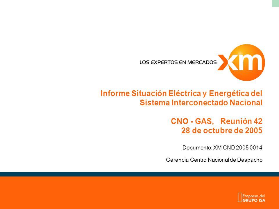 Gerencia Centro Nacional de Despacho