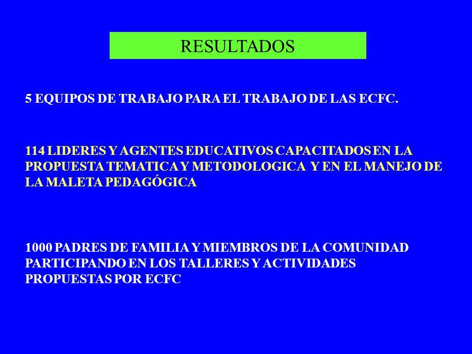 RESULTADOS 5 EQUIPOS DE TRABAJO PARA EL TRABAJO DE LAS ECFC.