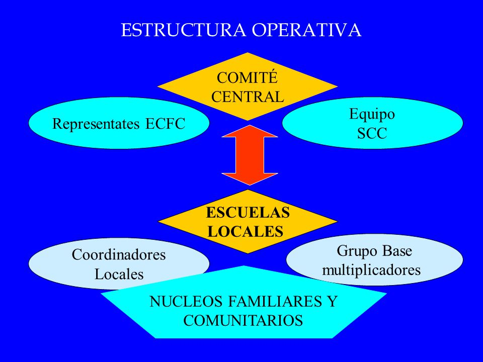 ESTRUCTURA OPERATIVA COMITÉ CENTRAL Equipo Representates ECFC SCC