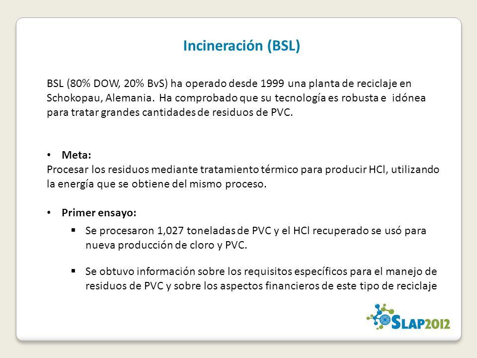 Incineración (BSL)