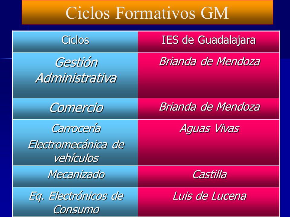 Ciclos Formativos GM Gestión Administrativa Comercio Ciclos