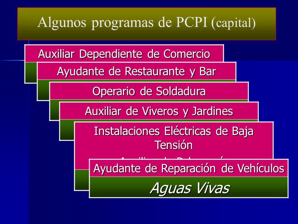 Algunos programas de PCPI (capital) Brianda de Mendoza Buero Vallejo