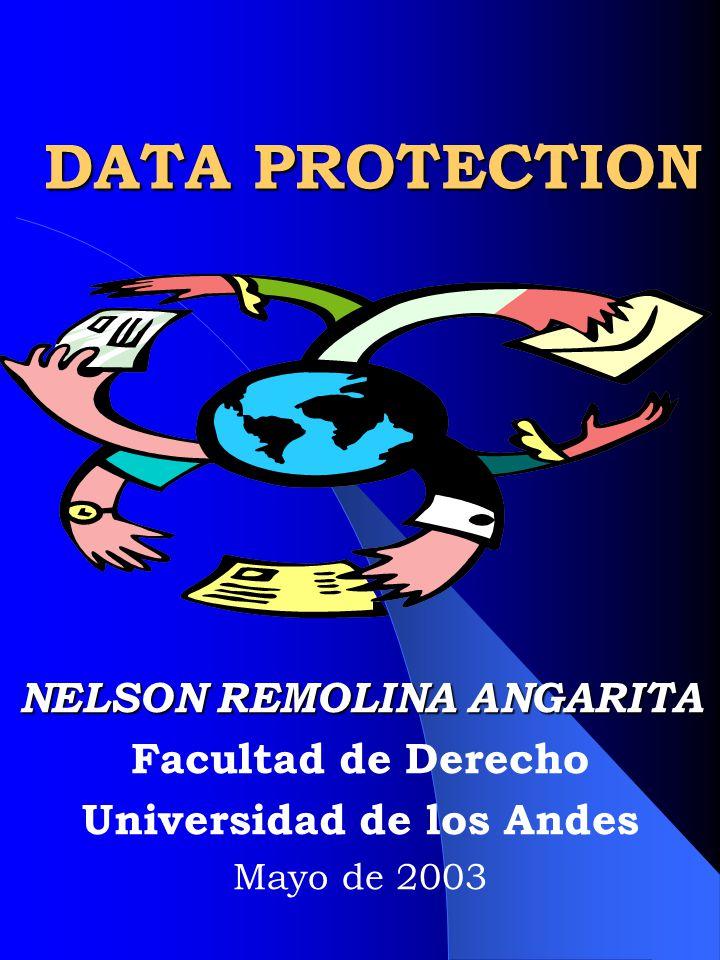 NELSON REMOLINA ANGARITA Universidad de los Andes