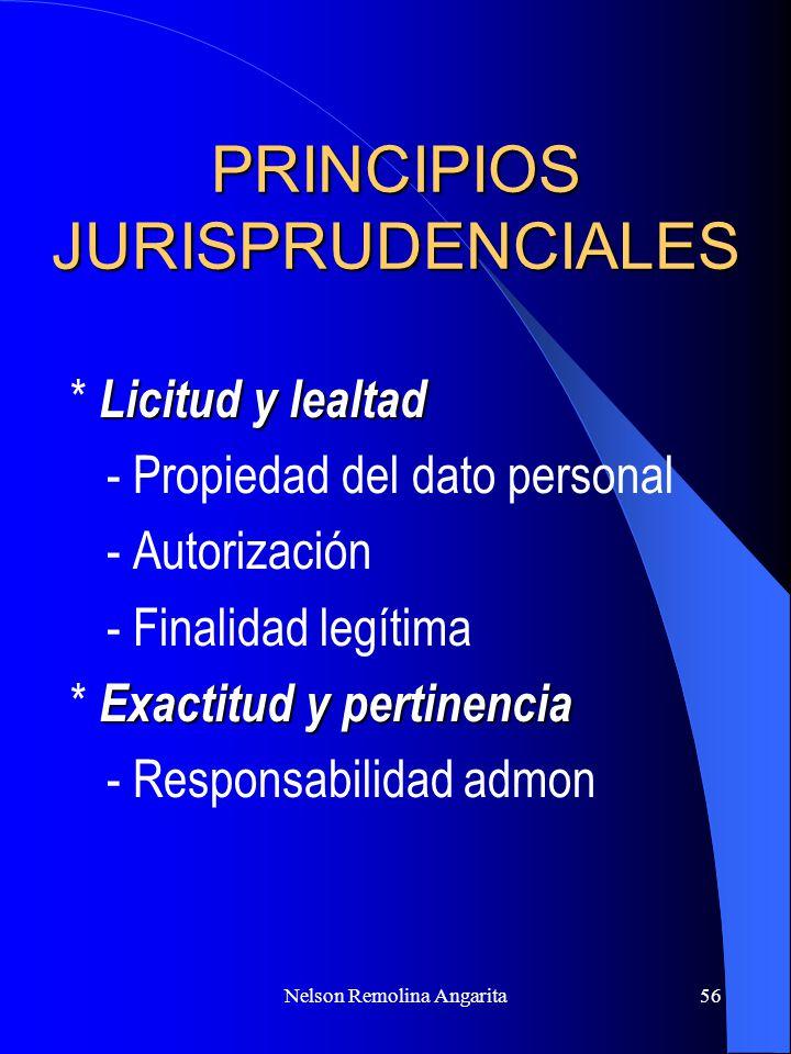 PRINCIPIOS JURISPRUDENCIALES