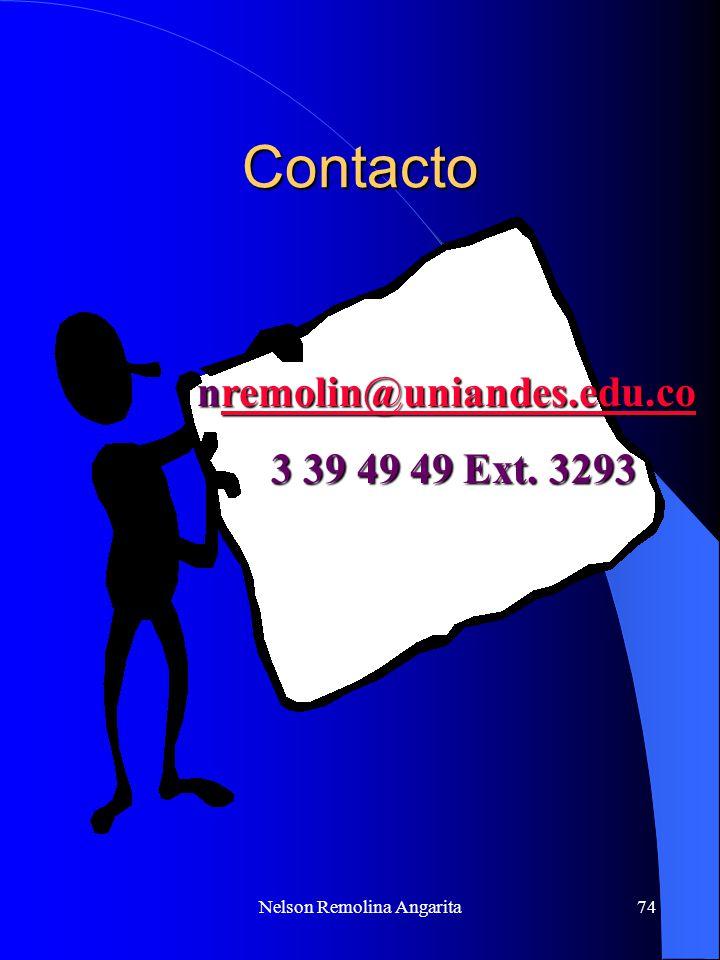Nelson Remolina Angarita
