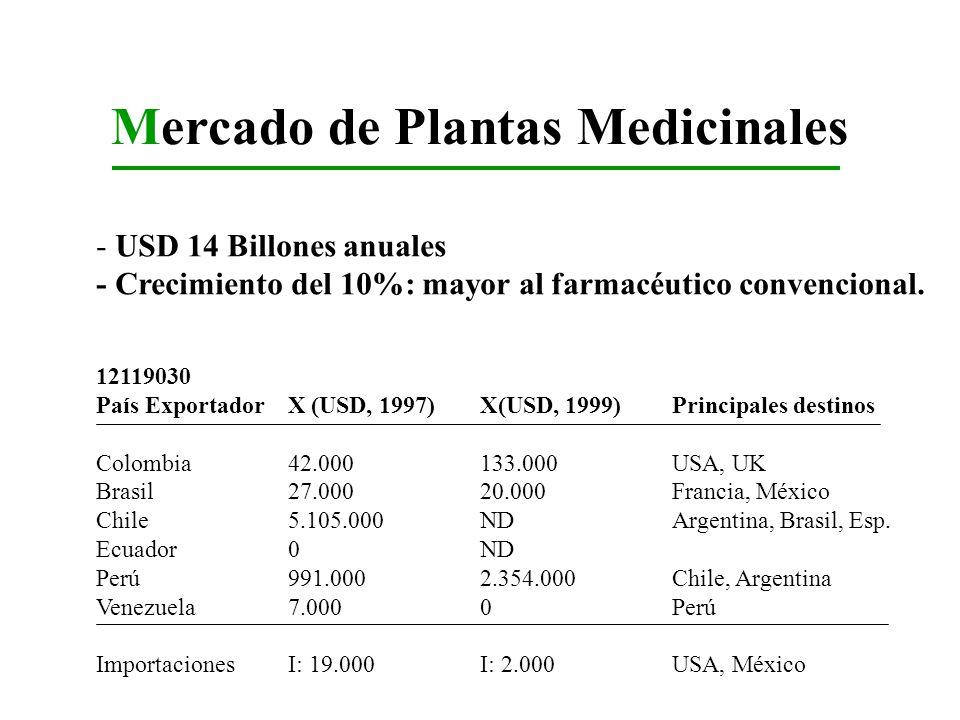 Mercado de Plantas Medicinales