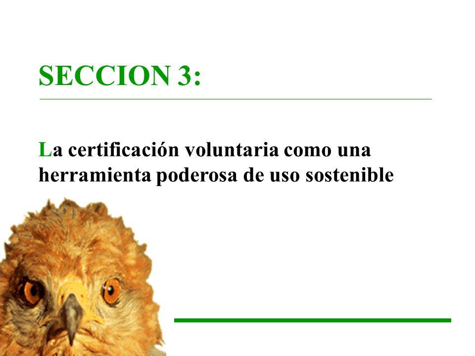 SECCION 3: La certificación voluntaria como una