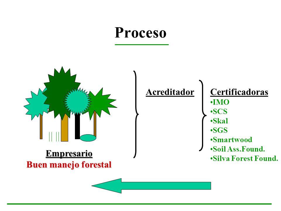 Proceso Acreditador Certificadoras Empresario Buen manejo forestal IMO