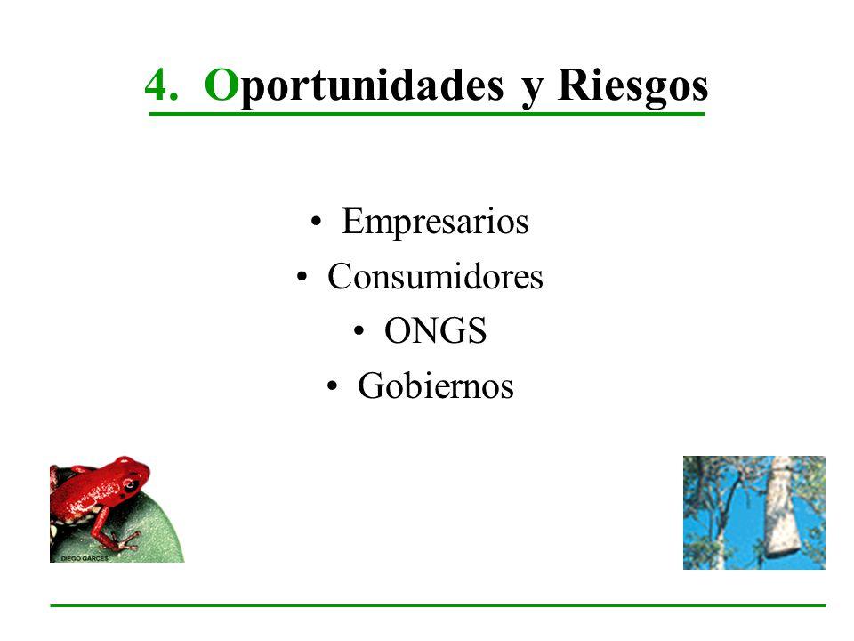4. Oportunidades y Riesgos