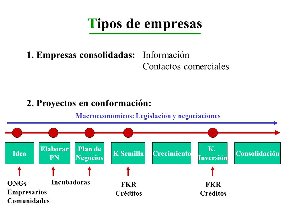 Tipos de empresas 1. Empresas consolidadas: Información