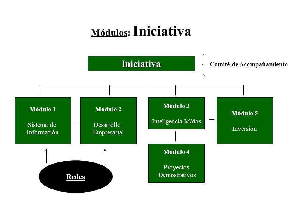 Módulos: Iniciativa Iniciativa