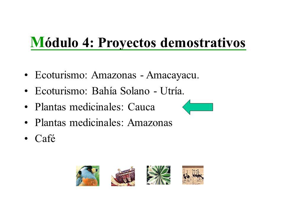 Módulo 4: Proyectos demostrativos
