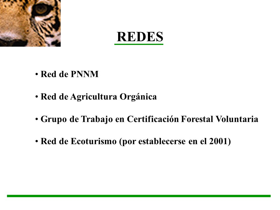 REDES Red de PNNM Red de Agricultura Orgánica