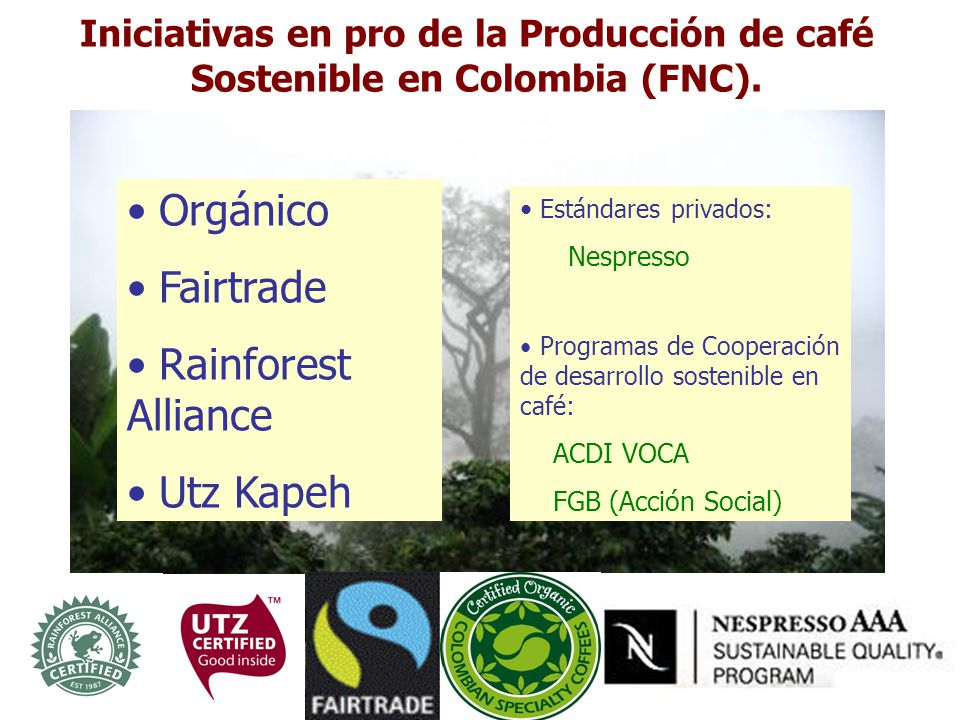 Orgánico Fairtrade Rainforest Alliance Utz Kapeh