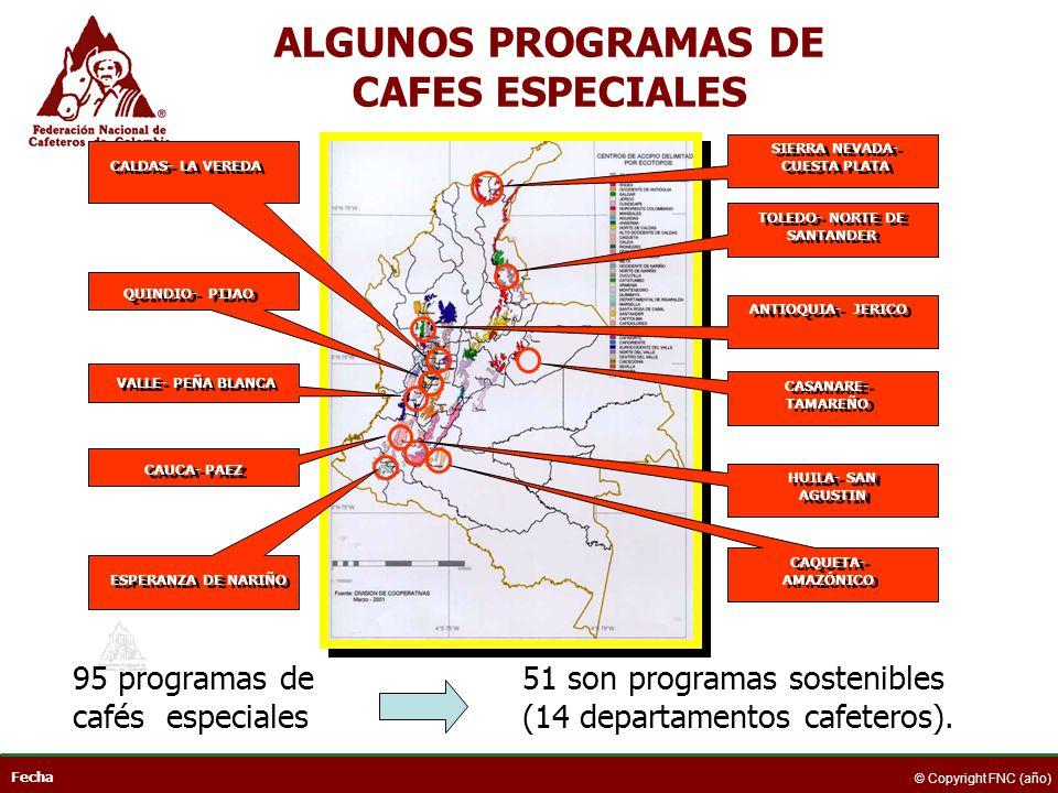ALGUNOS PROGRAMAS DE CAFES ESPECIALES