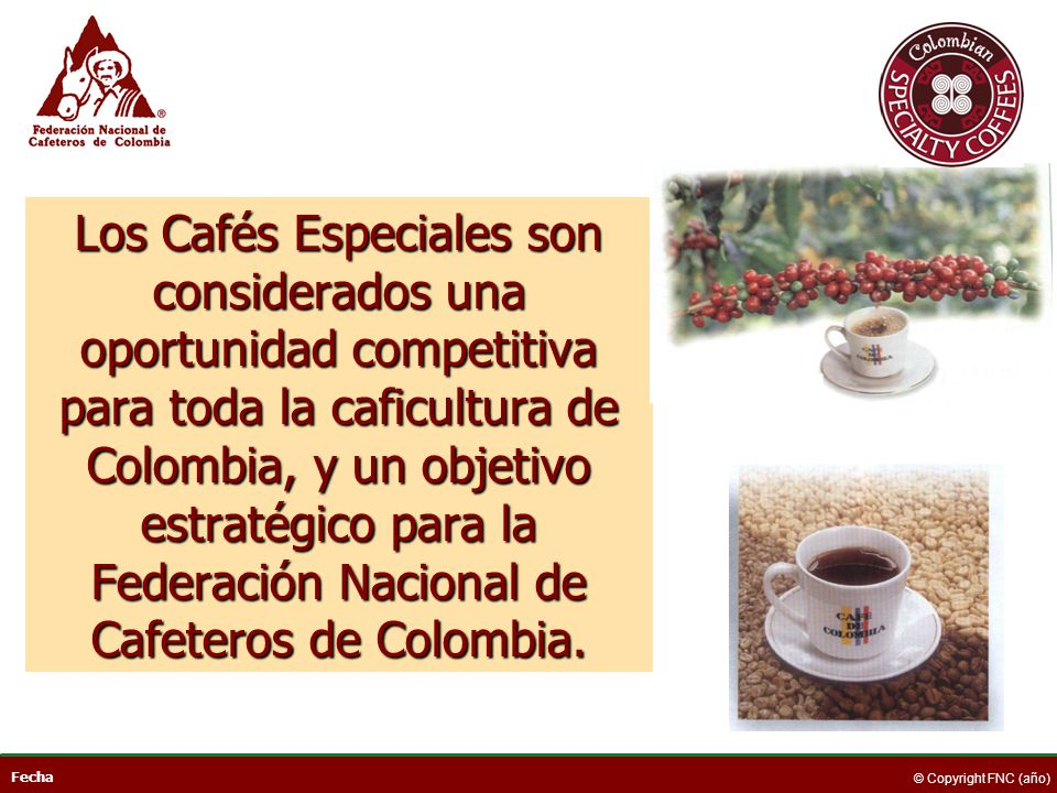 Los Cafés Especiales son considerados una oportunidad competitiva para toda la caficultura de Colombia, y un objetivo estratégico para la Federación Nacional de Cafeteros de Colombia.