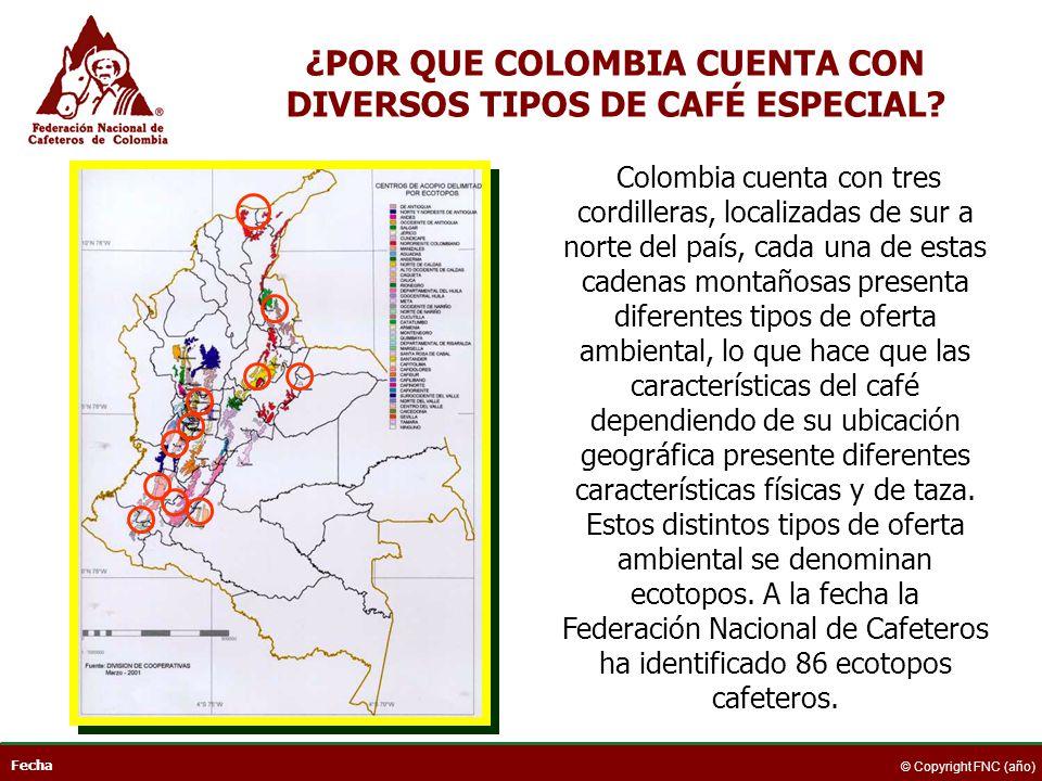 ¿POR QUE COLOMBIA CUENTA CON DIVERSOS TIPOS DE CAFÉ ESPECIAL