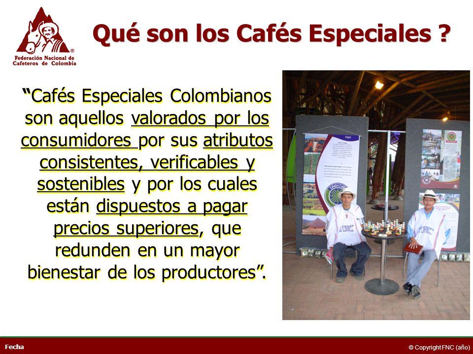 Qué son los Cafés Especiales