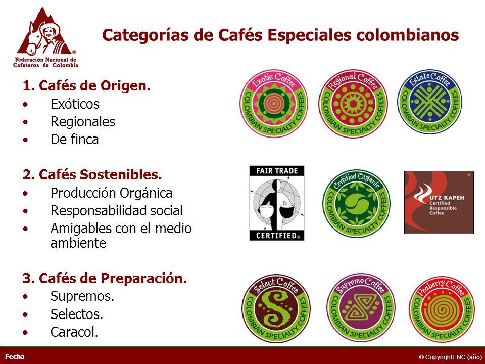 Categorías de Cafés Especiales colombianos