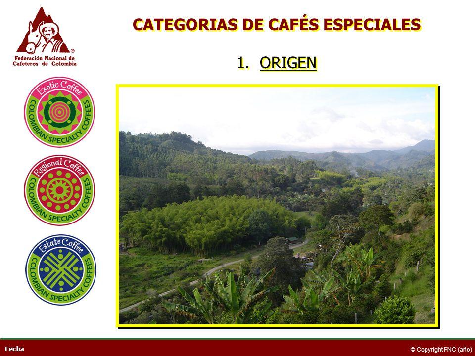 CATEGORIAS DE CAFÉS ESPECIALES 1. ORIGEN