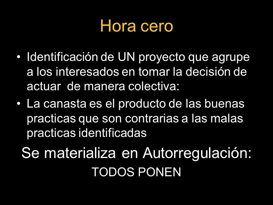 Se materializa en Autorregulación: