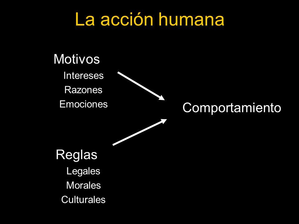 La acción humana Motivos Reglas Comportamiento Intereses Razones