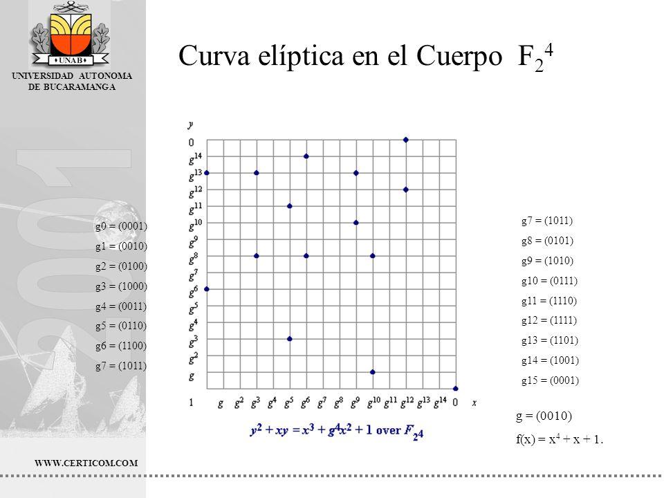 Curva elíptica en el Cuerpo F24
