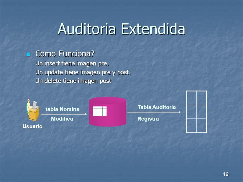 Auditoria Extendida Como Funciona Un insert tiene imagen pre.
