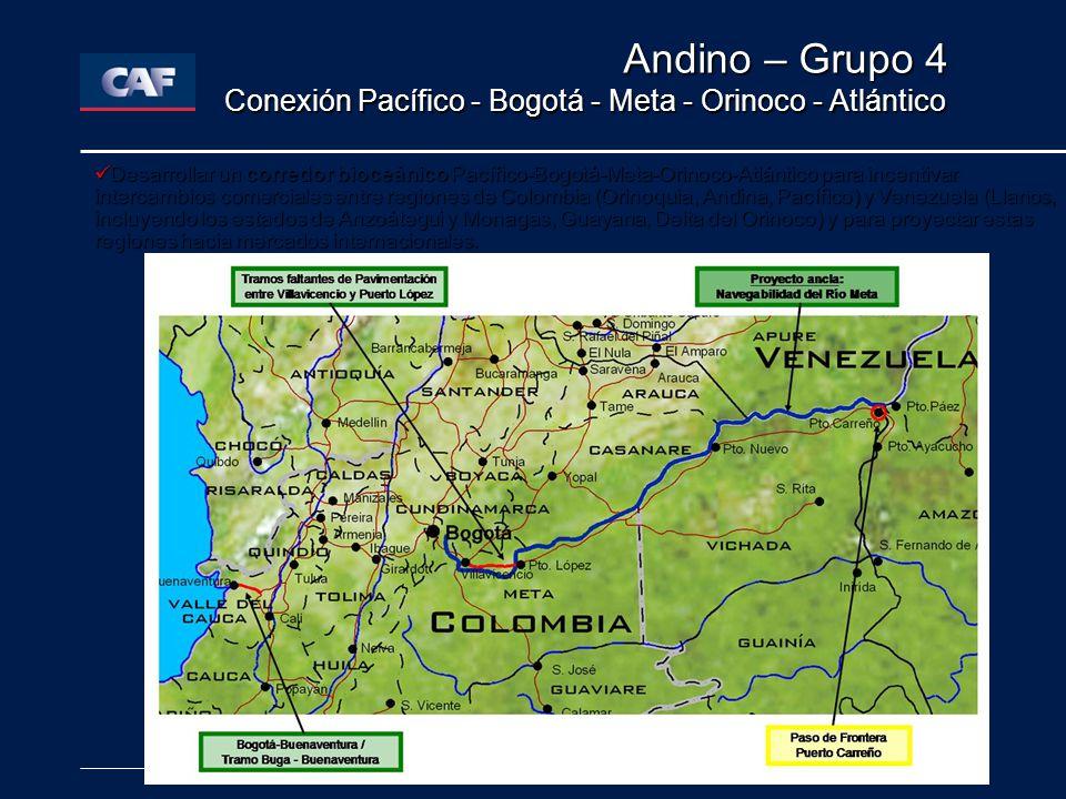 Andino – Grupo 4 Conexión Pacífico - Bogotá - Meta - Orinoco - Atlántico.