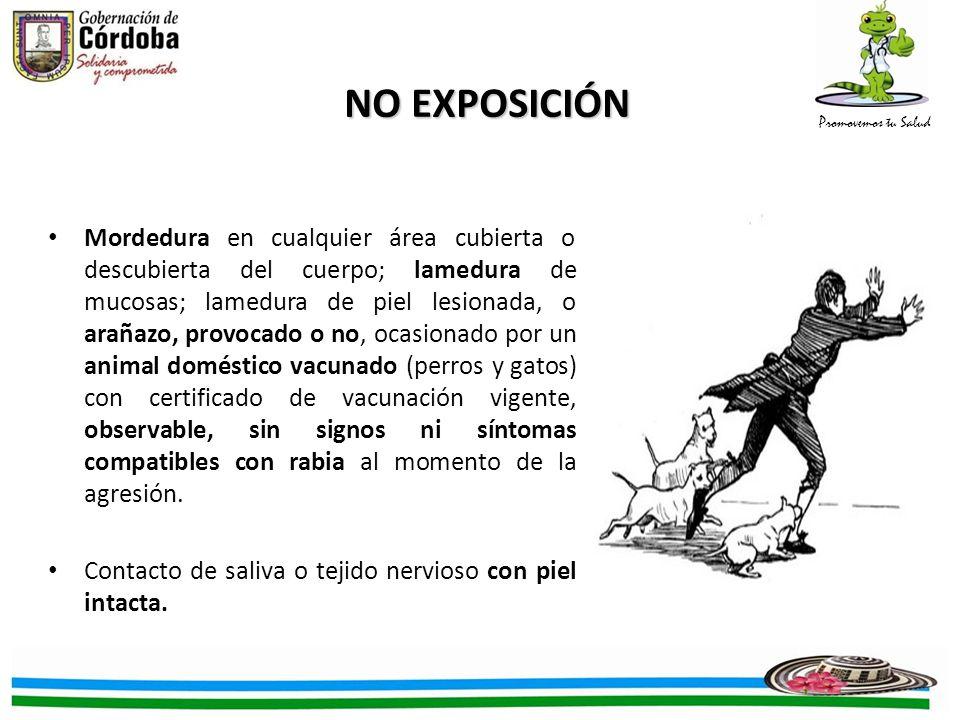 NO EXPOSICIÓN