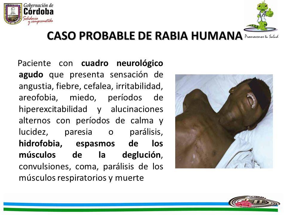 CASO PROBABLE DE RABIA HUMANA