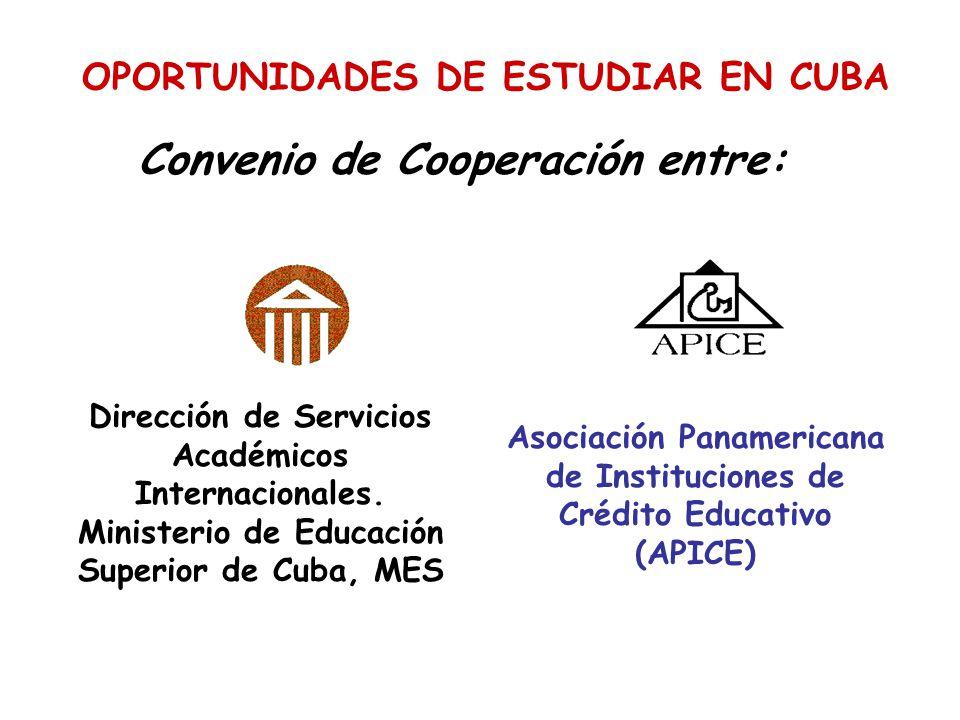 Asociación Panamericana de Instituciones de Crédito Educativo (APICE)