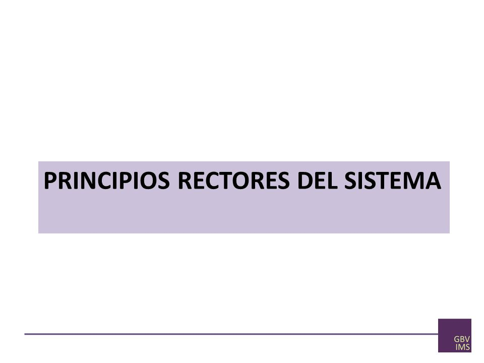 PRINCIPIOS RECTORES DEL SISTEMA