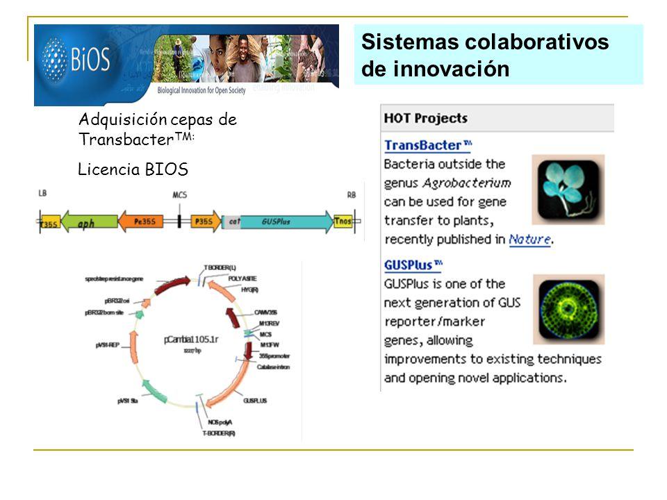 Sistemas colaborativos de innovación