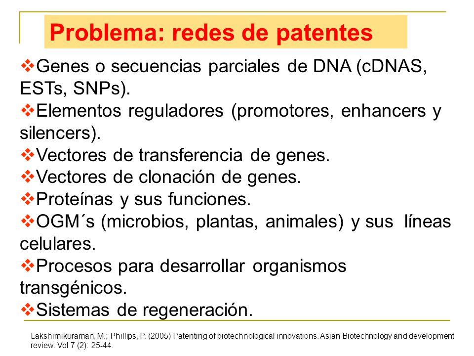 Problema: redes de patentes