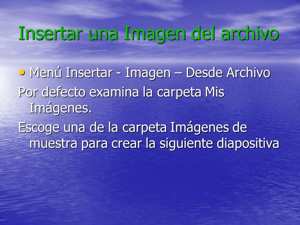 Insertar una Imagen del archivo