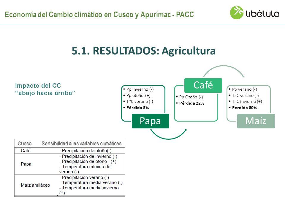5.1. Resultados: Agricultura