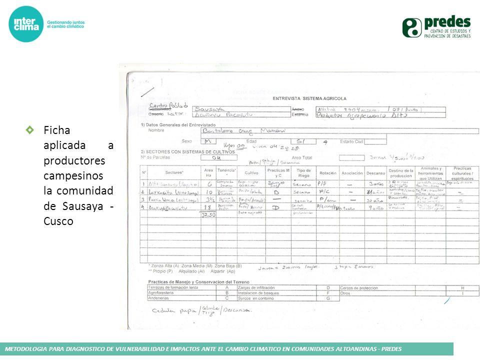 Ficha aplicada a productores campesinos la comunidad de Sausaya - Cusco
